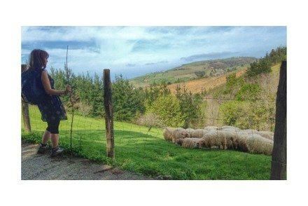 #zarautz #getaria #gipuzkoa #basquecountry #spring #sistersandthecity #euskadi #euskalherria #côtebasque