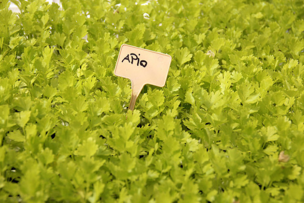 Karabeleko Hernani Producto Ecológico
