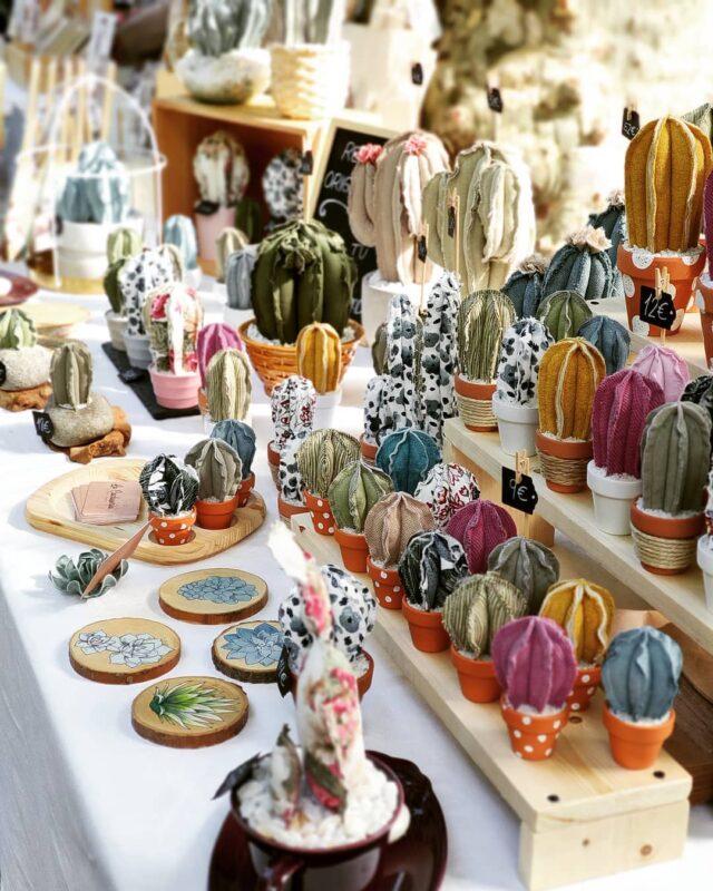 La Cactusería