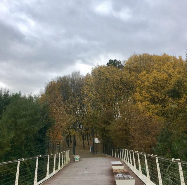 puente_mikel_laboa